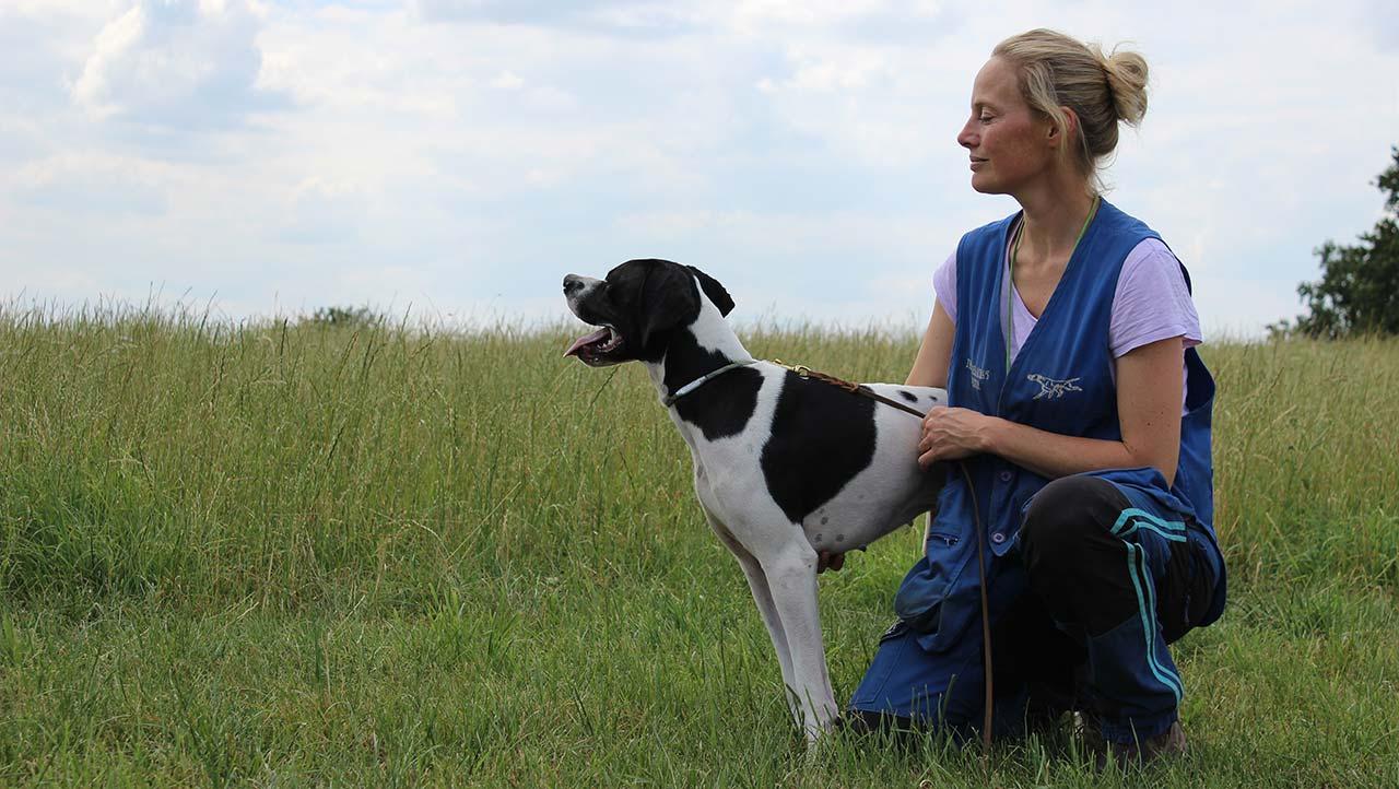 CACIT für Franchanna's Ely – International Field Trial in Tschechien